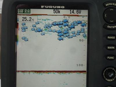 P1170720